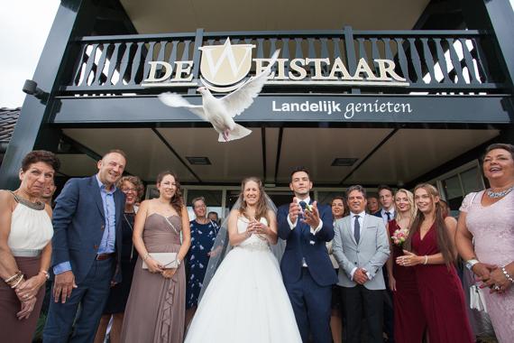 De-Weistaar-Maarsbergen (40)